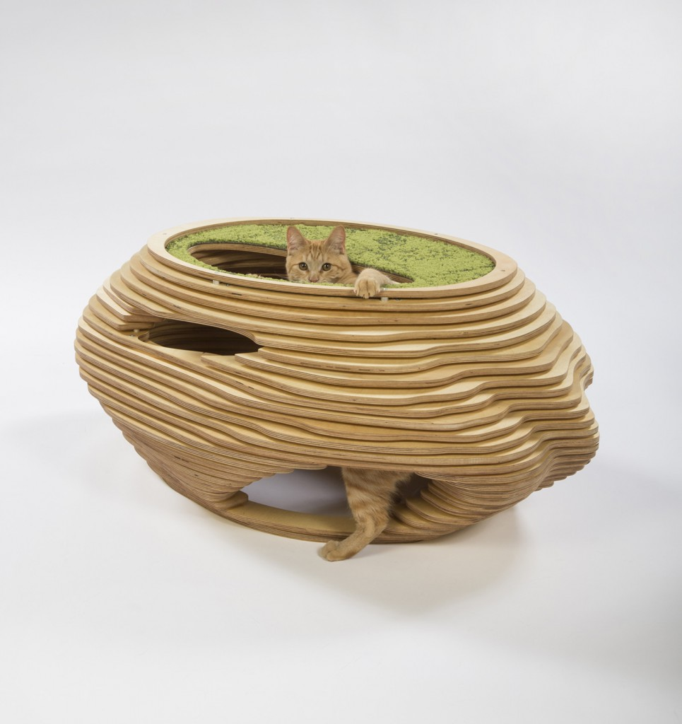 Abramson Teiger Architects - Cat in the Fish Bowl