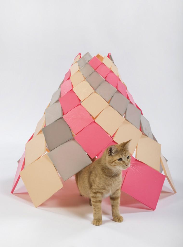 DSH architecture - Spiral Kitty