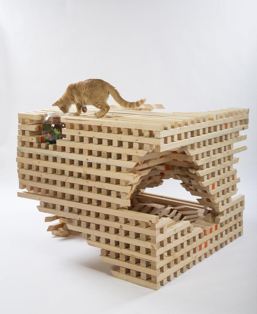 HOK - catSCAPE