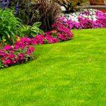 Cómo crear un jardín