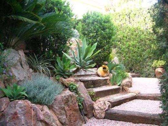 jardinmediterraneo