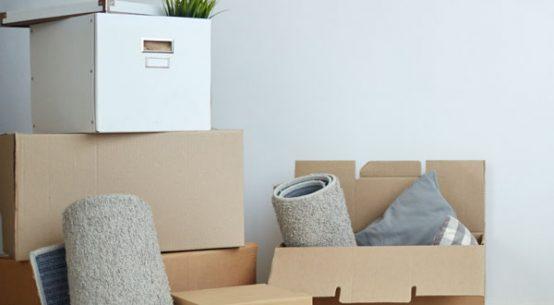 mudanza cajas alfombras