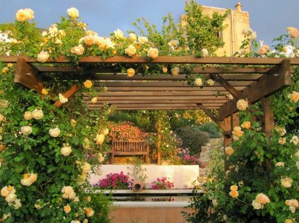 jardín pergolas rosas