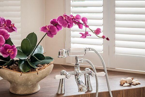 decorar con orquideas